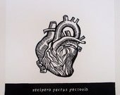 The Receptive Heart, Relief Print, the emotional heart, anatomical heart, latin text, hand pulled print, original art