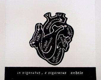 The Living Heart, Relief Print, the emotional heart, anatomical heart, latin text, hand pulled print, original art