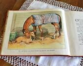 Vintage Children's Horse Book