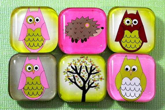SALE - Pink Owl Magnets, Hedgehog, Glass Fridge Kitchen Magnets