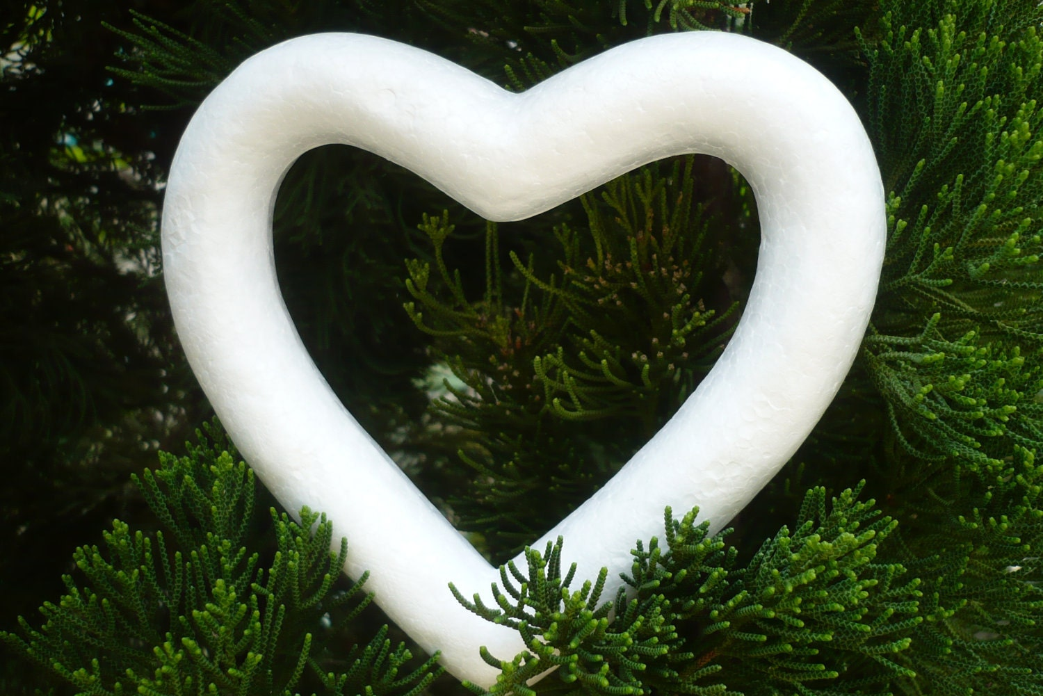 5 Styrofoam Heart Shaped Wreath Forms