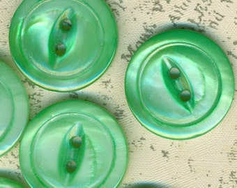 6 Green Mother of Pearl Shell Buttons 3/4 Inch 19mm MOP Sewing Buttons