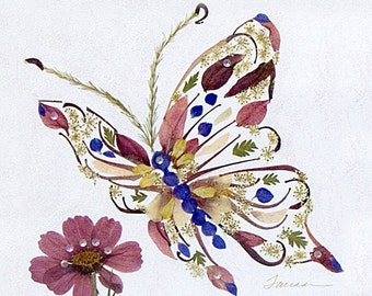 Elusive Butterfly with Cosmos- Fantasy Flower Art - 8 x 10 Fine Art Giclee Print - Pressed Flowers
