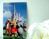 Fantasyland is Just Pooh-fect- 1980's Walt Disney World Postcard