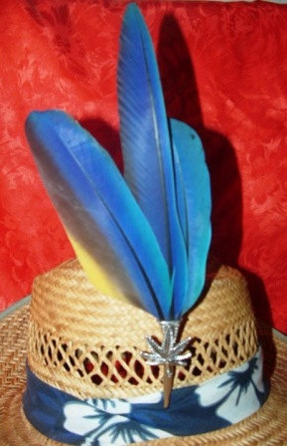 Macaw Parrot Feather Clip