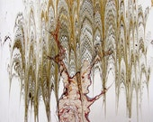 """Willow Tree - Original Marbling Art, Hand Marbled Paper, The Original """" Marbled Graphics""""TM by Robert Wu"""
