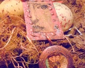 Antique Assemblage Locket  with Curiosities and and Taxidermy by Sinful Solace
