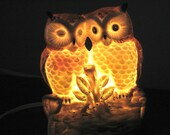 Vintage Lamp Two Wide Eyed Owls Porcelain Night Light - Vintage Lighting