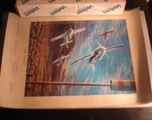 Reno Nevada Airplane Air Races Poster Print Autographed By Pilots Desert Conquest Vintage