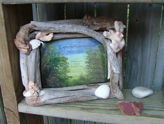 Driftwood Picture Frame 5 x 7 with Seashells and Coral