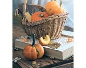 Pumpkin Season - fine art photo print autumn fall orange vegetable harvest interior decor Helloween food still life