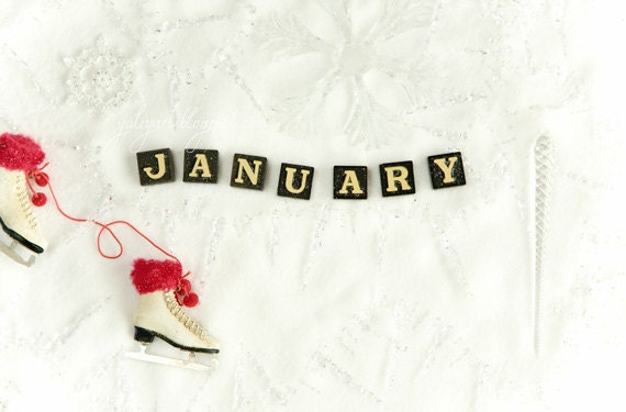 January - photography print calendar zodiac Aquarius Capricorn winter birthday owl romantic gift for her him unisex home decor wall art love