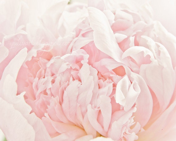 Peony Heart - romantic flower photography shabby chic fine art bloom blossom soft pink gift nursery decor for her wedding
