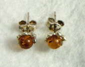 Amber in Sterling Silver Studs