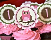 PDF Personalized and Custom Modern Owl Girl Birthday/ Baby Shower Cupcake Toppers & Wrappers- Printable DIY