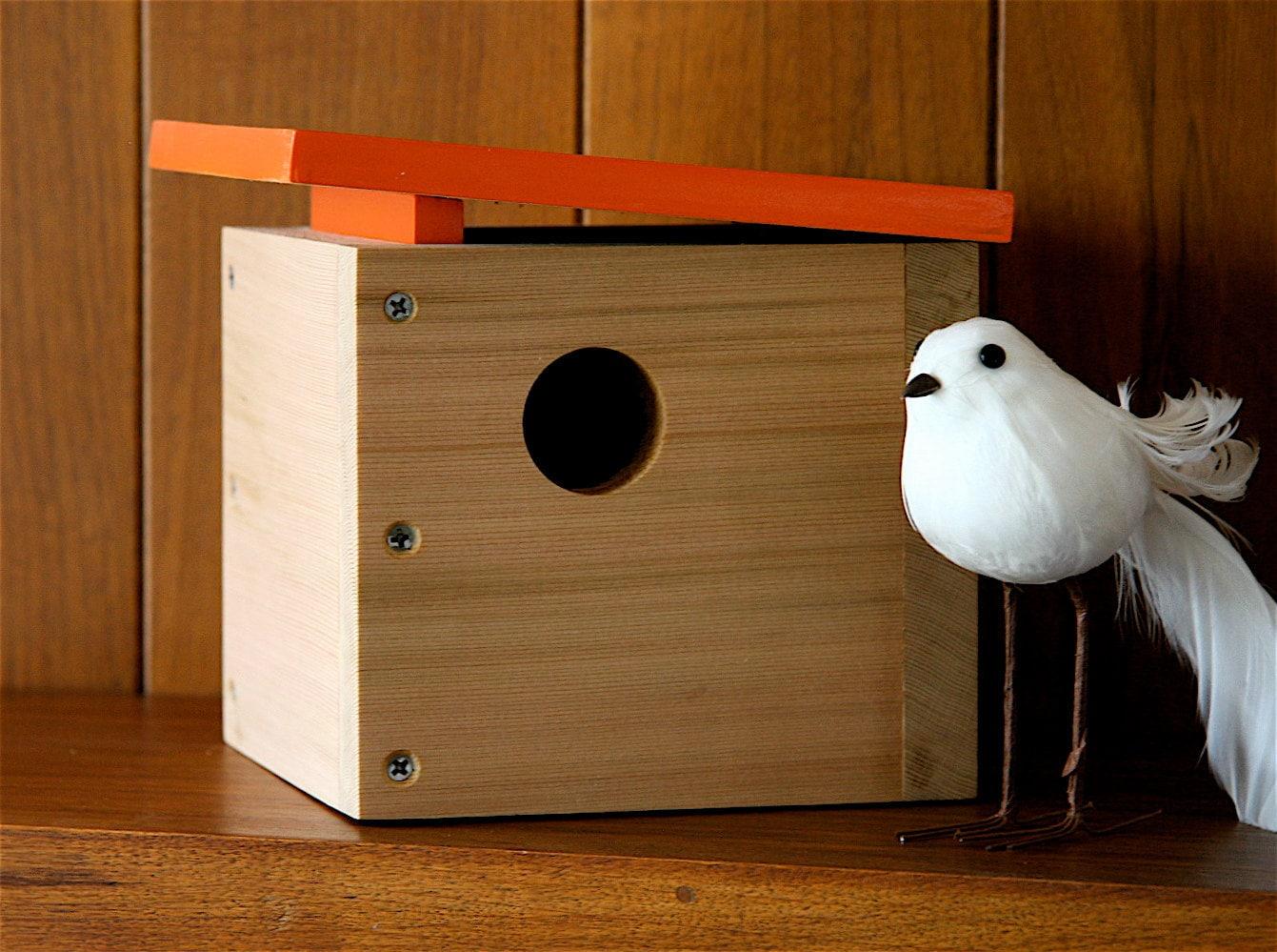 Case Study Mini Modern Birdhouse In Orange By By