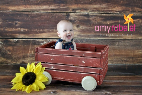 FREE SHIPPING Photography Wagon Prop