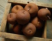 Set/9 Grungy Primitive Waxed/Cinnamon Apples