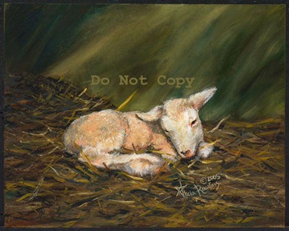 8X10 Painting of a Newborn Lamb
