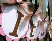 Baby Shower Banner- It's A Girl - Pink and Chocolate Brown Butterfly