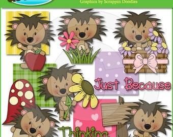 Little Hedgehog Clip Art