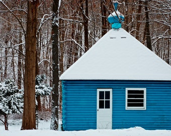 Bright Blue House in Snow