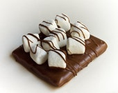 12 Chocolate Covered Graham Cracker Smores
