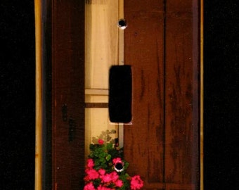 Single Switchplate Cover - Geraniums and Yellow Window