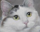 Custom Pet Portrait, 8 x 10