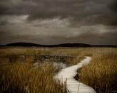 Landscape Photography // Stormy Night Fine Art Photograph by Heather Reid // Plum Island Boardwalk Moody Dark Sea Grass Sepia Print