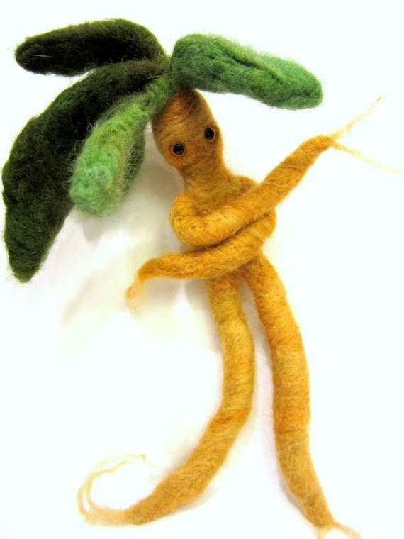 Felted mandrake plant needle felted root weird flower