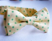 Polka dot lemon bow tie