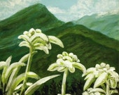 """Edelweiss- original painting,  6""""x6"""" acrylic painted on a wide edge canvas, edges are painted black."""
