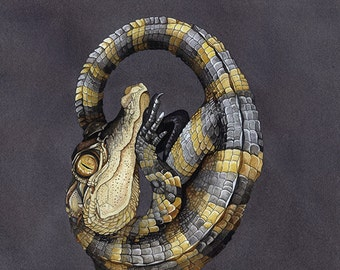 """Curled Up Alligator 