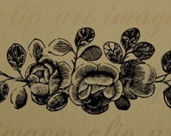 Rose Festoon, Flower Clip Art, Garland, Sash Royalty Free Clip Art, No Credit Required