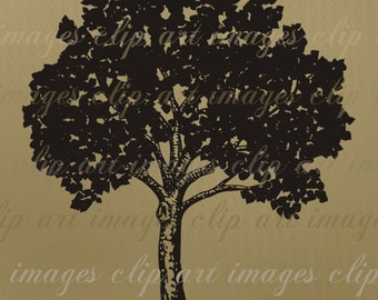 Leafy Tree Clip Art, Royalty Free Graphic, Digital Download, design element, commercial use digital stamp