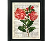 VintageClips Art Print F001 - Flowers printed on vintage dictionary page.