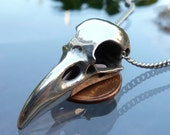 Raven Skull Necklace in Polished Pewter