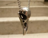 Small Raven Skull Pendant Necklace in Polished Pewter on Stainless Steel Chain