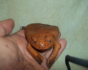 Real animal tanned leather Cane toad Frog Coin Purse bag part weird gift