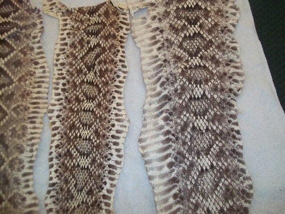 4 real animal tanned hide pelts rattle snake skins parts