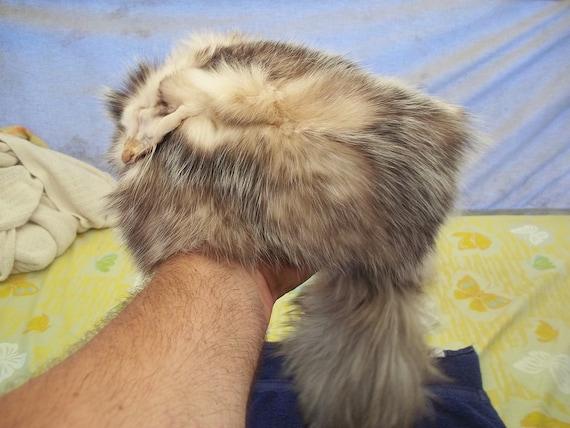 Real Opossum Fur Skin Pelt Hat Animal Part
