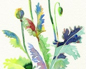 Poppy seedheads - Original floral watercolour Painting