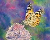 Painted Lady - Fine Art Giclee Print