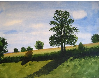 Tree in Summer - Original Watercolour Painting