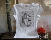 SALE. The Heart Illustrated and Defined- Tshirt- black on oatmeal or gray - Available in Womens S, M, L