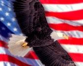American Flag & Eagle Fine Art Digital Photo 8x10