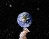 Chihuahuas Rule the World  Fine Art Digital Photo 8x10