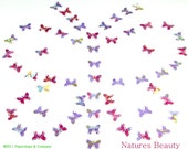 Natures Beauty, Butterfly Punchies, Set of 60 Hand Punched Die Cuts