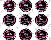1st, 2nd, 3rd, 4th & 5th Birthday Princess with crown - Great for Hair Bows or Necklaces 1 inch image sheets for bottle caps